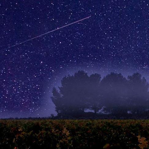 Lluvia de estrellas en bodega de Requena