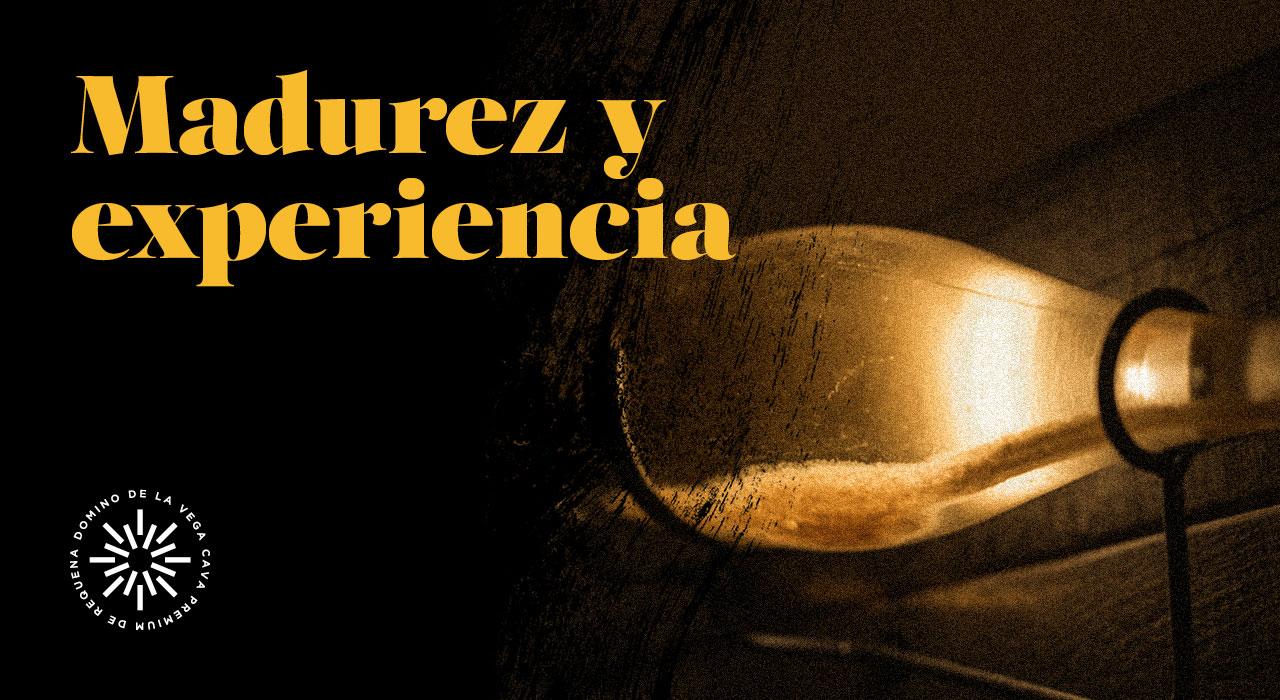 Madurez y experiencia: Dominio de la Vega Cava Premium de Requena